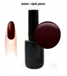 GEL Polish - Soak Off - riple plum 15 ml